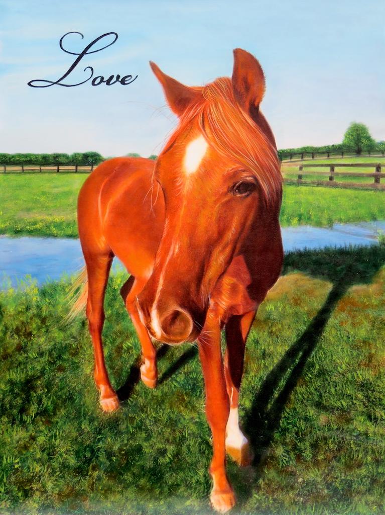 Splendid Beast Horse Portrait