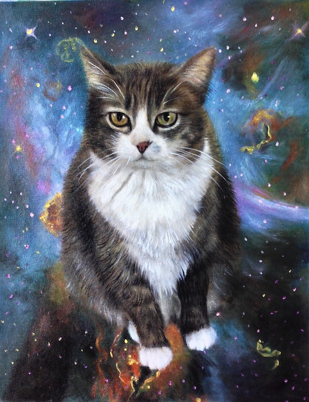 Outer Space Cat