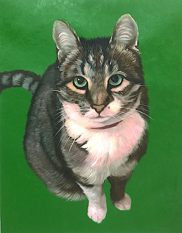 Cat Portrait with Green Background