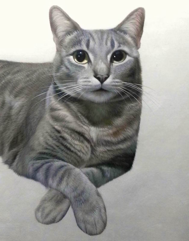 Grey cat painted with white background by Splendid Beast
