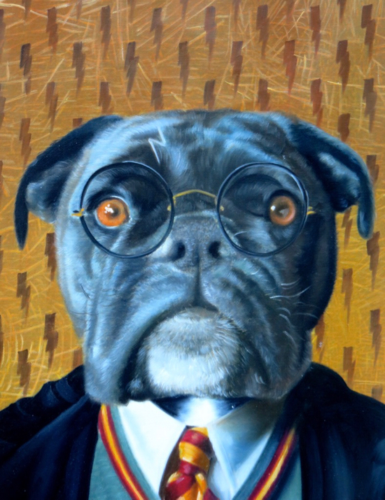 Dog painted as Harry Potter