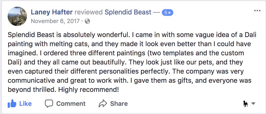 5 star Splendid Beast review from Facebook