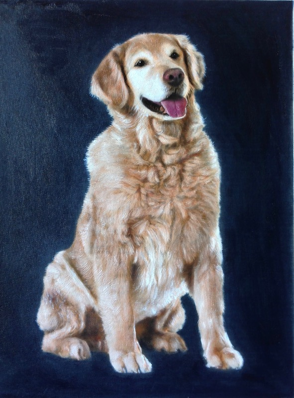 Golden Retriever Dog Oil Portrait with Navy Blue Background